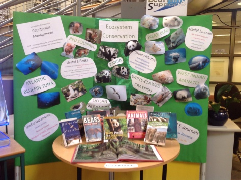 The display next to the counter in the Library